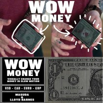Wow money by masuda & lloyd barnes - euro