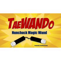 TaeWando by Timothy Pressley (bacchetta )