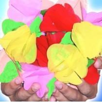 Fiori a molla  bouquet (piccolo)