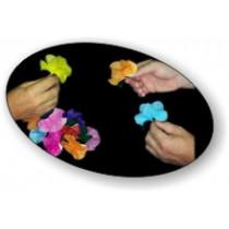 fiori dalle mani
