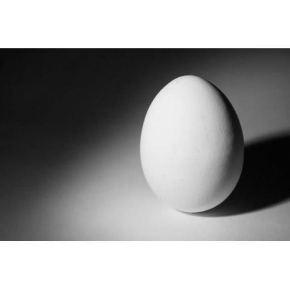 Uovo -per effetto fazzoletto nell'uovo
